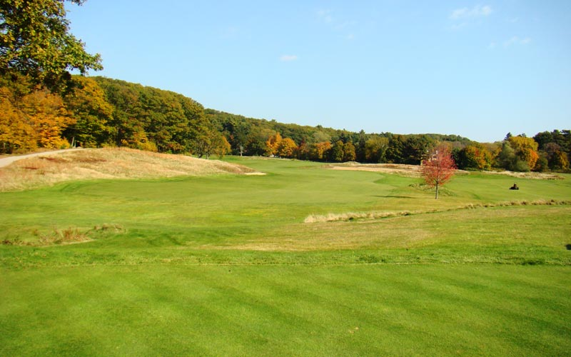 What if trees still crowded in from the left instead of the fescue grass? The sixteenth hole would be less appealing.