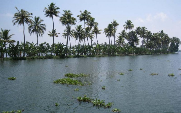 Backwaters site