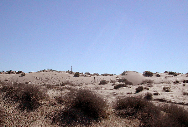 The thrilling dunescape that is soon to be 4th at Las Palomas and...