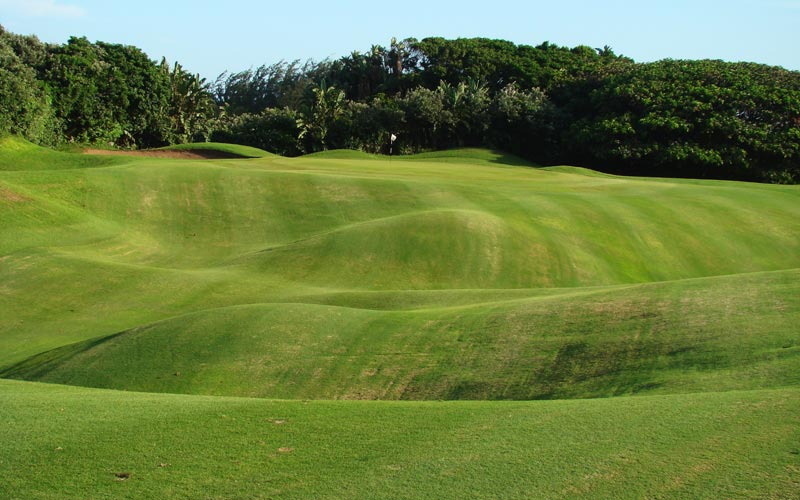For fairway contour, you can search the world and not find any as wild and random as that captured within the seventeenth fairway at Durban. Give the Golden Age architects plenty of credit for embracing these landforms within the hole.