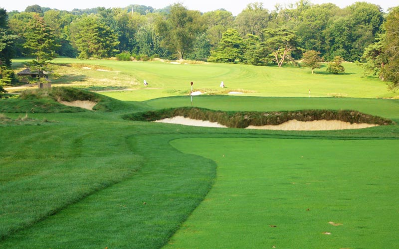Despite a ferociously defended green, will any of the contestants try to drive near the eighth green under the match play format?