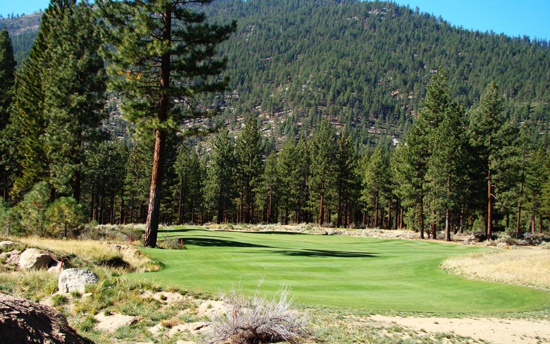 One of two bunkerless holes on the course, the twelfth is made by its green. The long flight of the ball against the Ponderosa and Jeffrey pines will stay with the golfer.