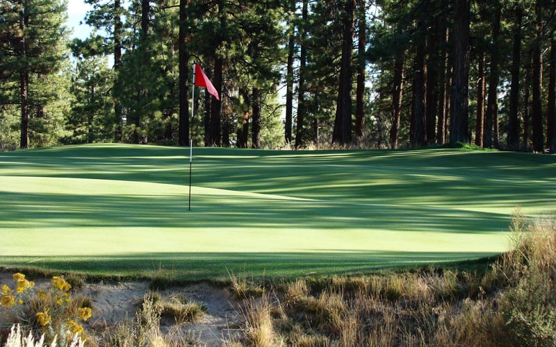 .. the interior contours of the green flows from front to back through a trough poses its own set of unique challenges.