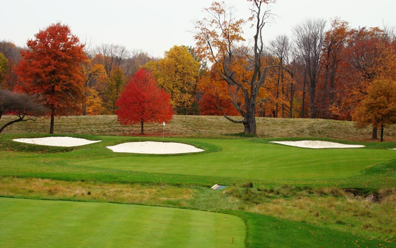A draw at the barren tree is the perfect play as the tee ball will hit and trickle down the right to left slope toward the day's hole location.