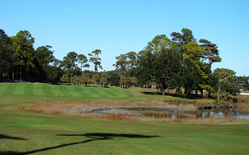 The tidal marsh becomes the dominant feature of the next two holes, though the trees on the inside of this dogleg right push the golfer away from it off the tee.