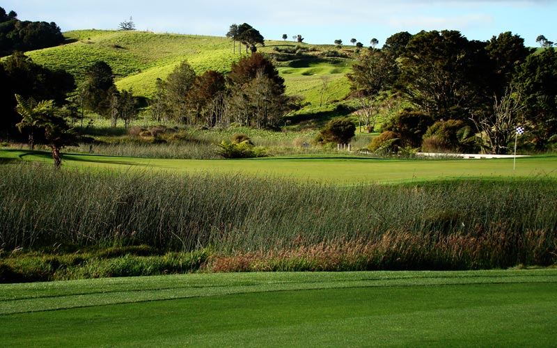 Kauri Cliffs golf course Julian Robertson, golf in New  Zealand, David Harman...the approach to a peninsula green that protrudes into the marsh becomes most worrisome.