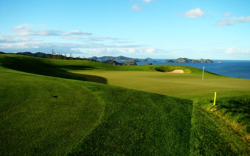 Kauri Cliffs golf course Julian Robertson, golf in New  Zealand, David Harman Not without heart, Harmond bowled out the area for the seventh green and golfers can use the bank (well away from the cliffs!) to kick balls onto the putting surface.