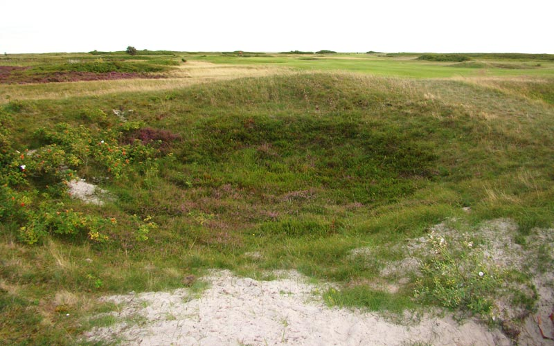 Falsterbo Golf Club, Golf in Sweden, Peter Chamberlain, Peter Nordwall