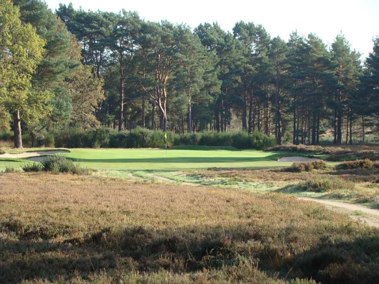 The fifteenth green is an oasis in a sea of heather.