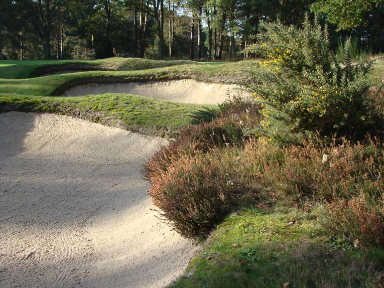 Golden Age architects viewed upslopes as ideal canvases for bunkers with character -  so it is at the sixteenth!