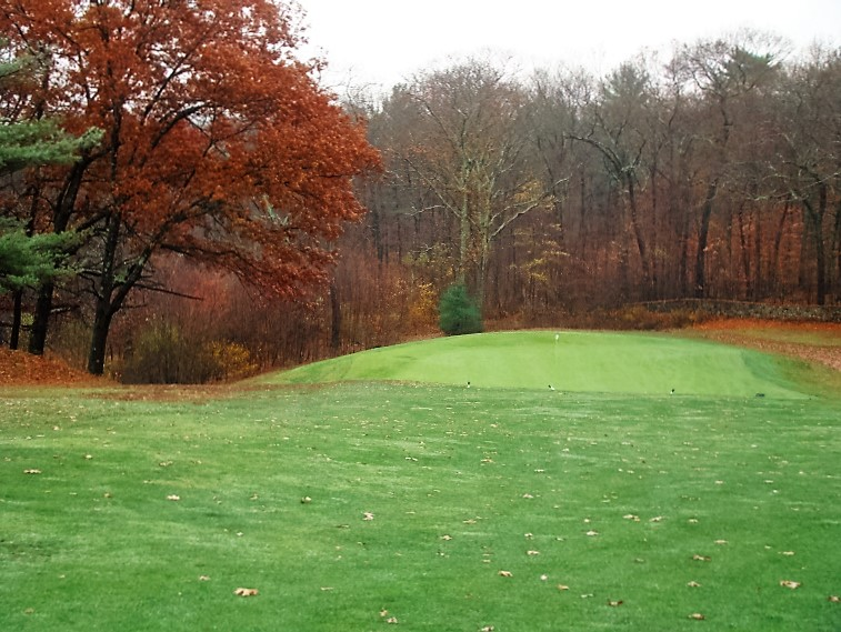 A majestic oak tree makes its presence known down the left; best to approach this bunkerless green from the outside of the dogleg.
