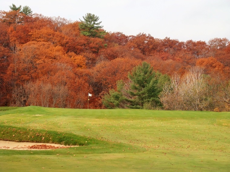 Given the steep fall off behind, chasing after back hole locations is one of the day's tenser moments. The trees in the background are 300 yards away; in 2010, a row of trees formed a back drop just 10 yards behind! As the trees and mow lines improve, Glens Falls rise in fame has followed.
