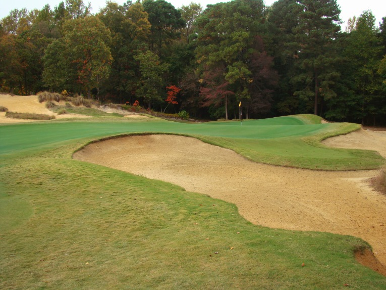 The average golfer should hit plenty of fairways and greens at Tobacco Road but reaching a green like the fifteenth is just the beginning - the golfer needs to find the right section in order to score.