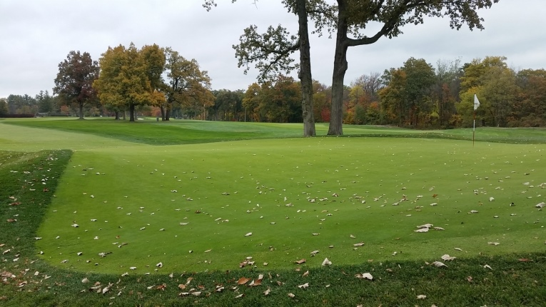 Taken from the back right portion of the green, the ninth green shares similar attributes to the 5th at Somerset Hills (be it on a more modest scale) with a steeply sloped front section, flat back left section protected by a bunker/tree (where the flag is today), and finally a few feet deep half pipe section in the back right.